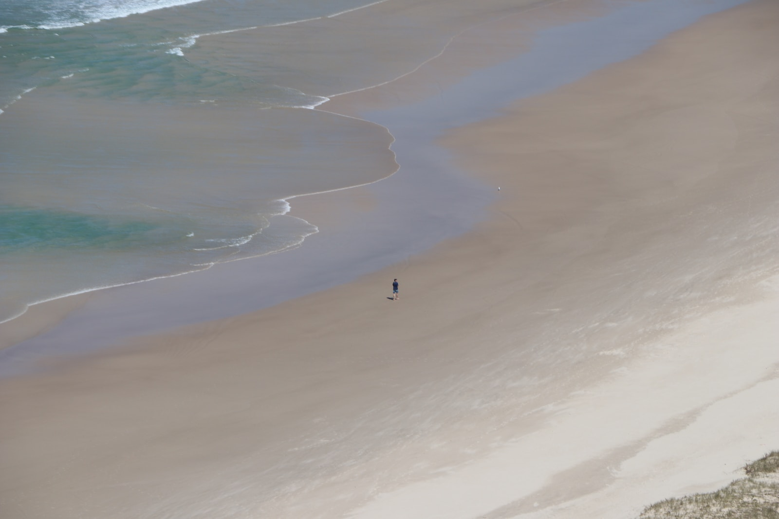 person in white shirt walking on beach during daytime